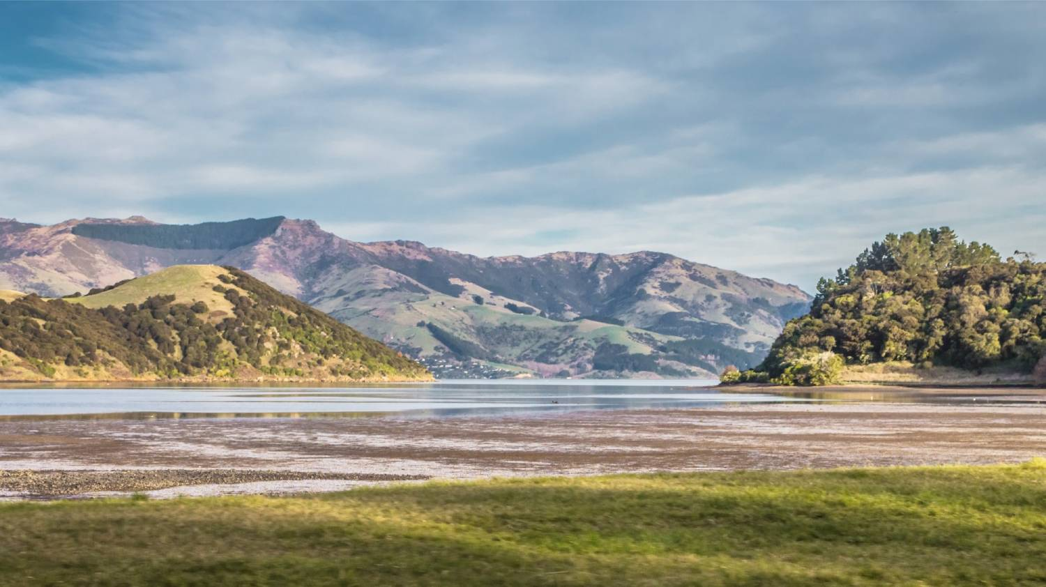 Akaroa Harbour - Things To Do In Christchurch