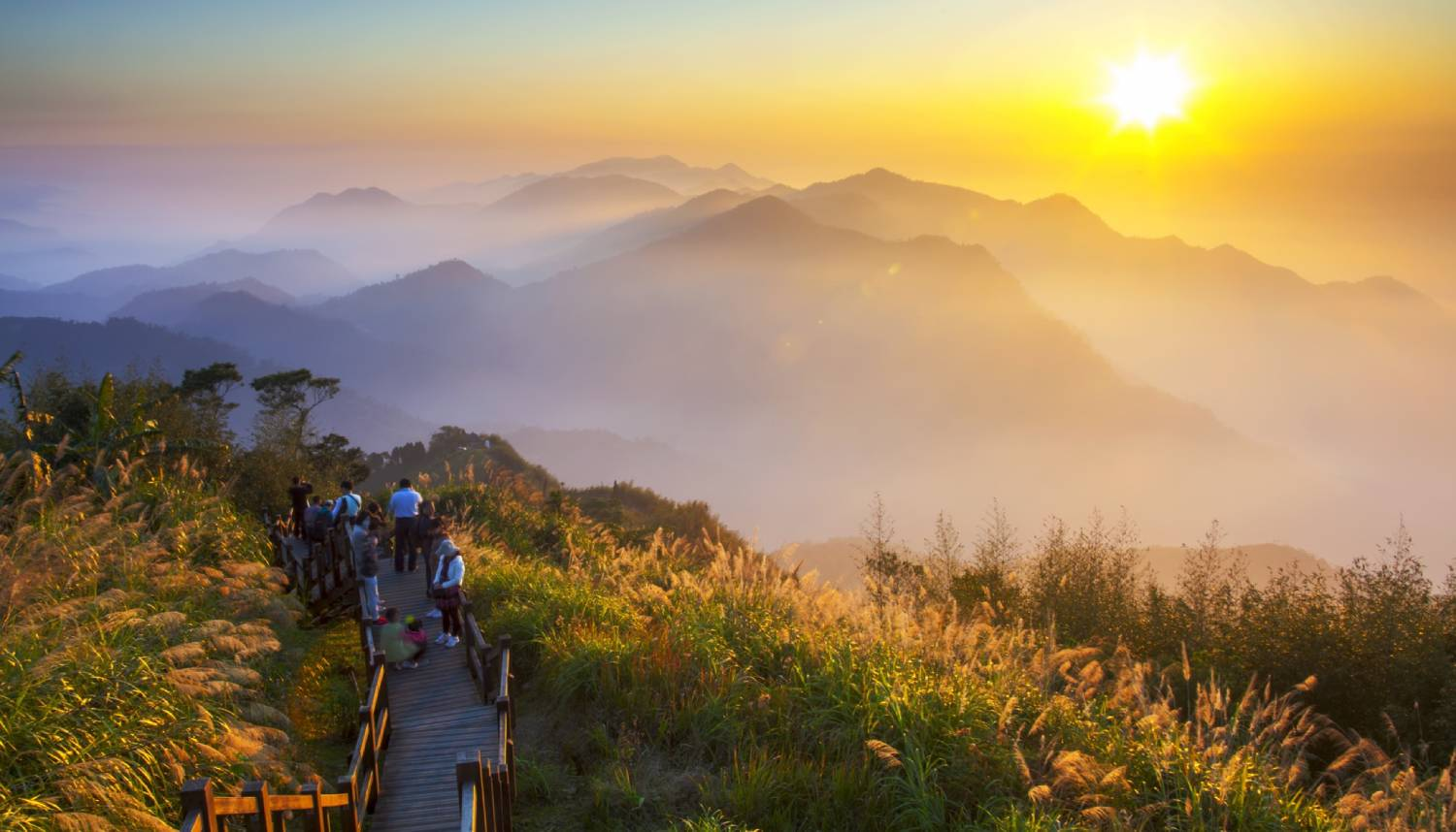 Alishan National Scenic Area - Things To Do In Taipei
