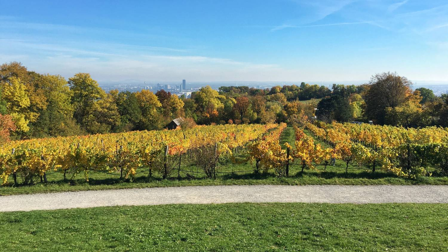 Am Himmel - Things To Do In Vienna