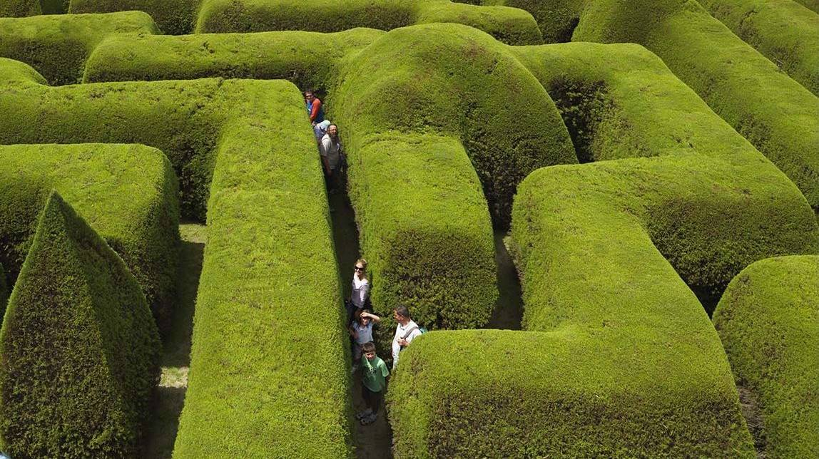 Ashcombe Maze & Lavender Garden - Things To Do In Melbourne