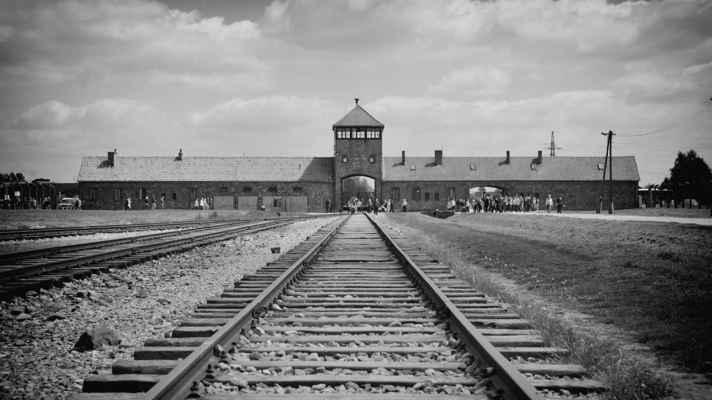 Auschwitz-Birkenau Memorial and Museum - Things To Do In Krakow