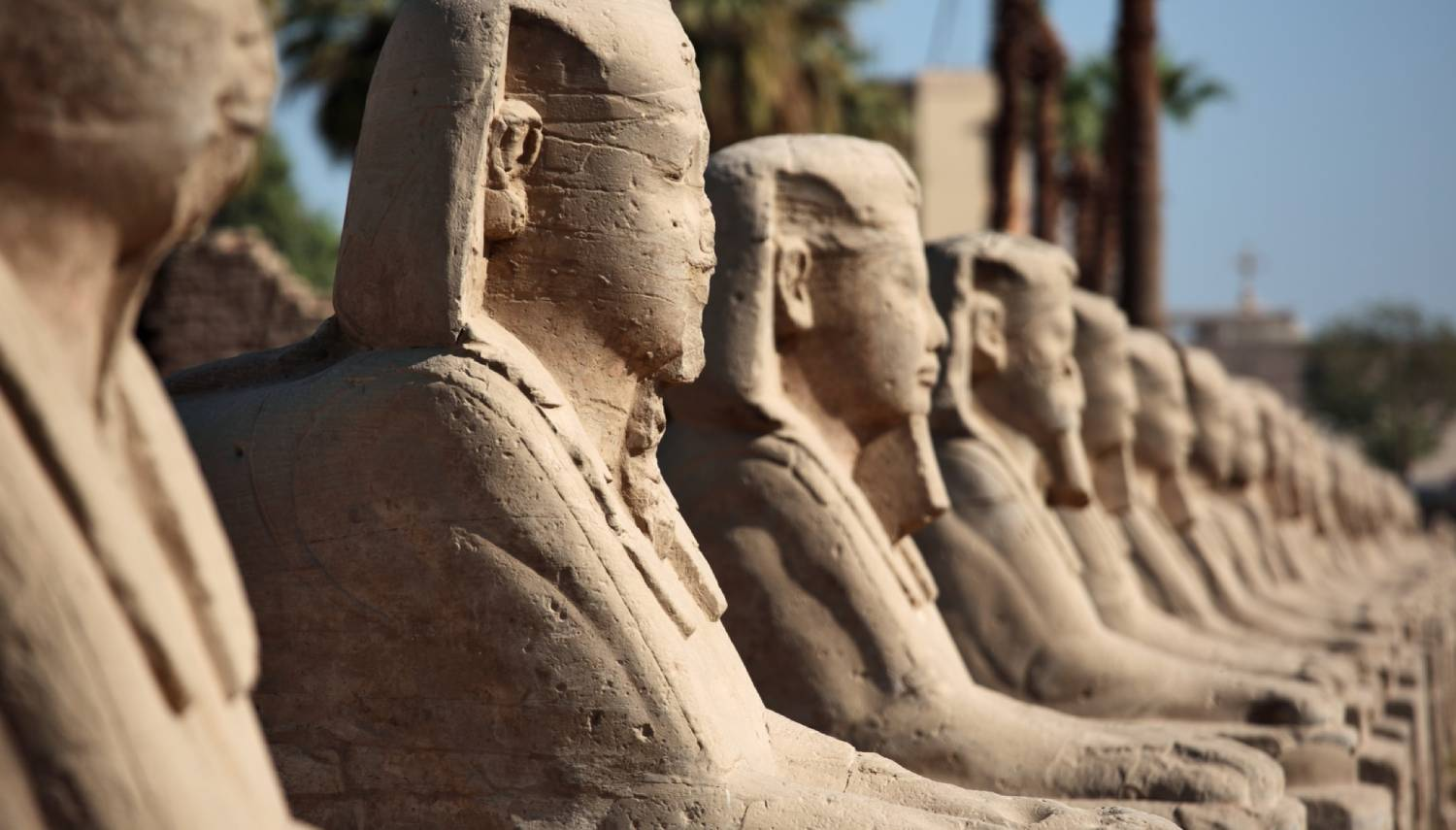 Avenue of Sphinxes - Things To Do In Luxor