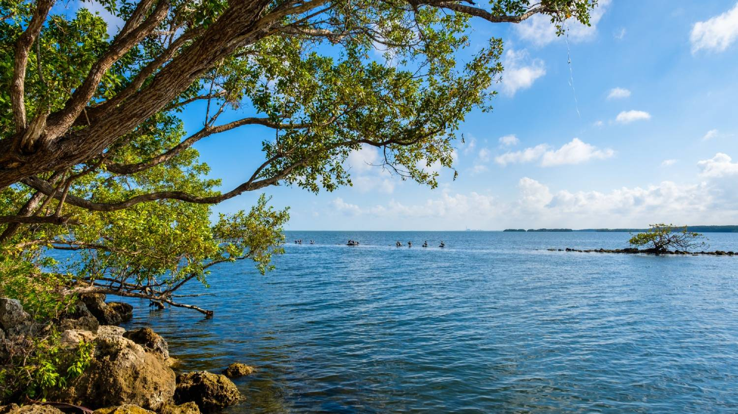 Biscayne National Park - Things To Do In Miami