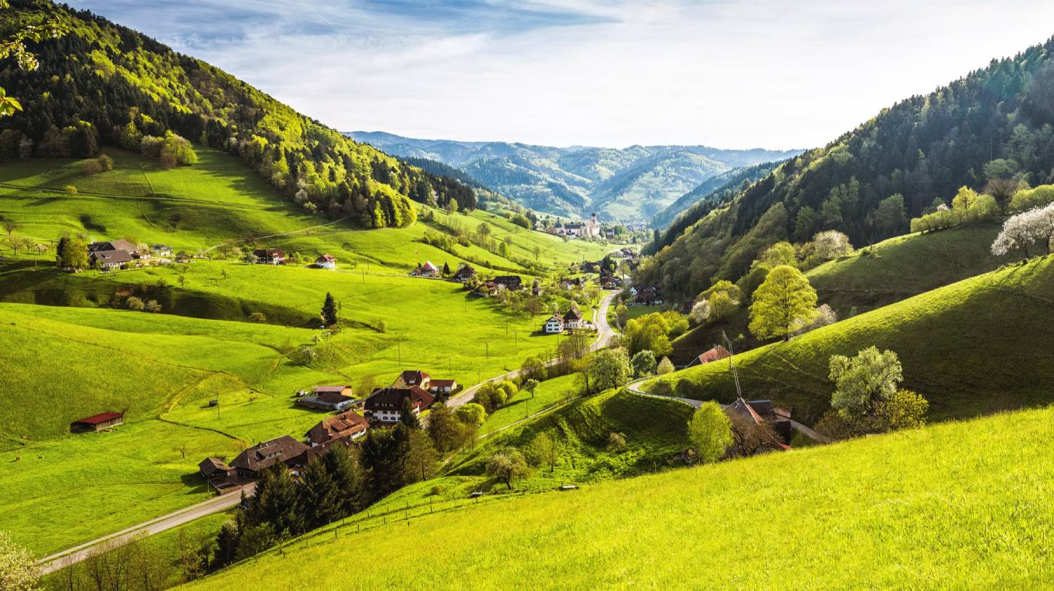 The Black Forest - The Best Places To Visit In Germany