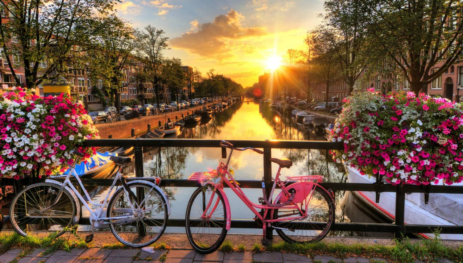 Canals of Amsterdam - Things To Do In Amsterdam
