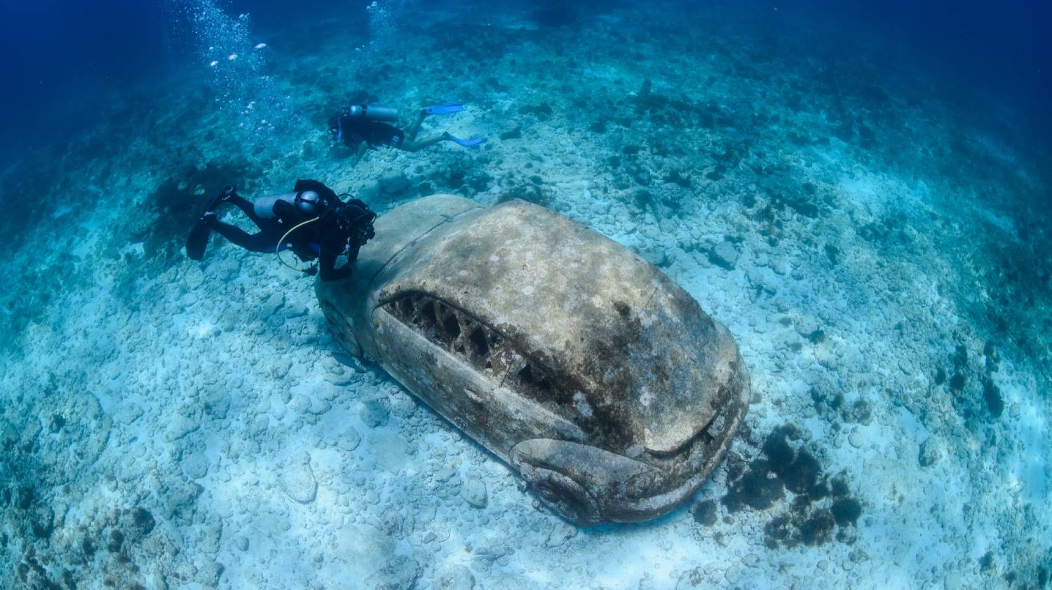 Cancun Underwater Museum - Things To Do In Cancun