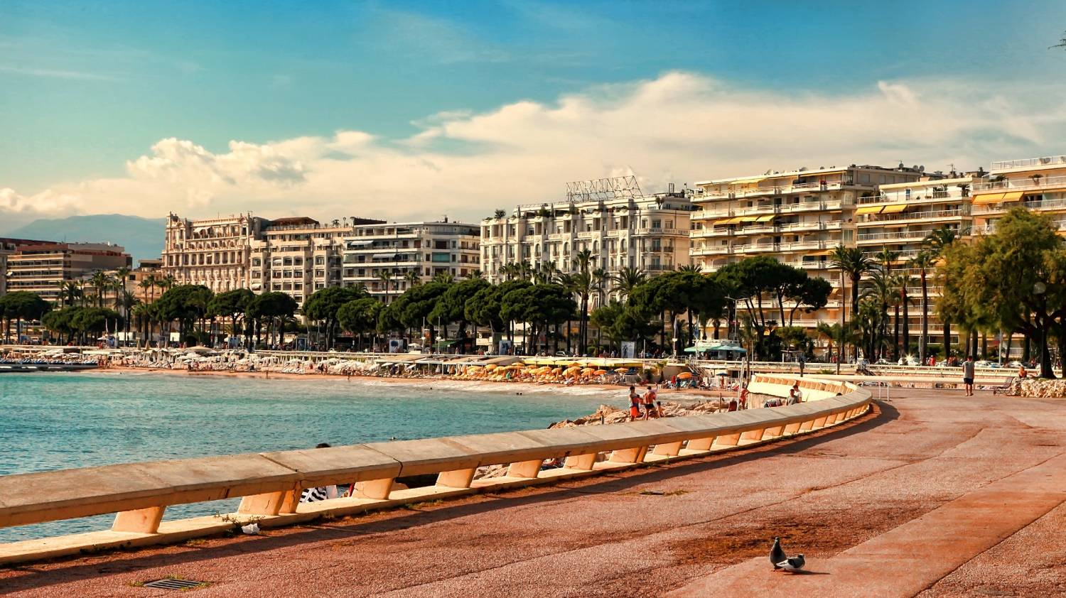 Cannes - The Best Places To Visit In France