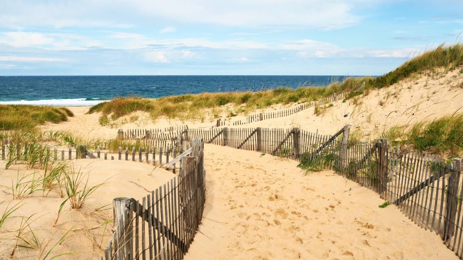 Cape Cod - Things To Do In Boston