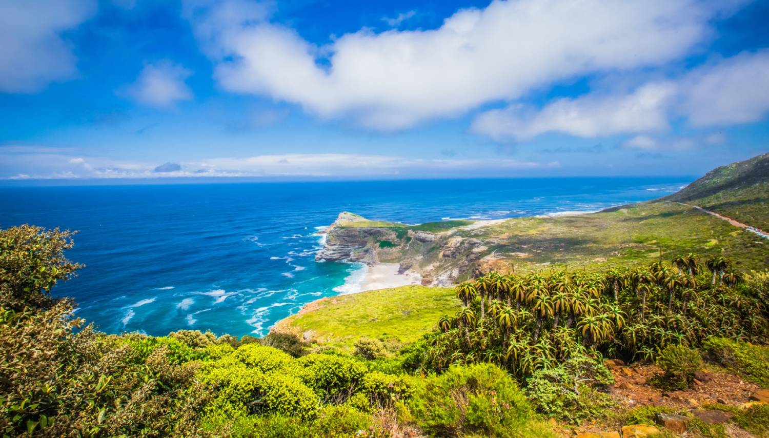 Cape Point Nature Reserve - Things To Do In Cape Town