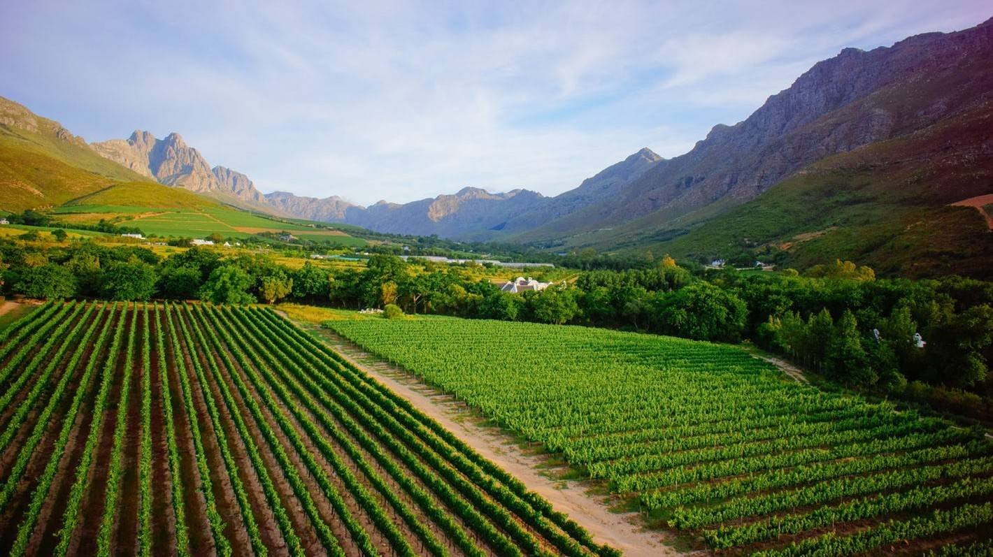 Cape Winelands - Things To Do In Cape Town