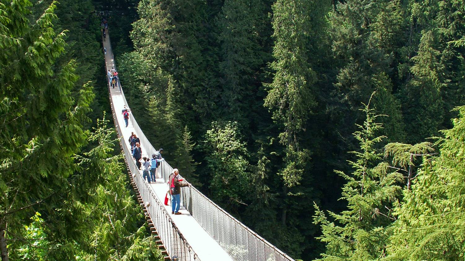 Capilano Suspension Bridge Park - Things To Do In Vancouver
