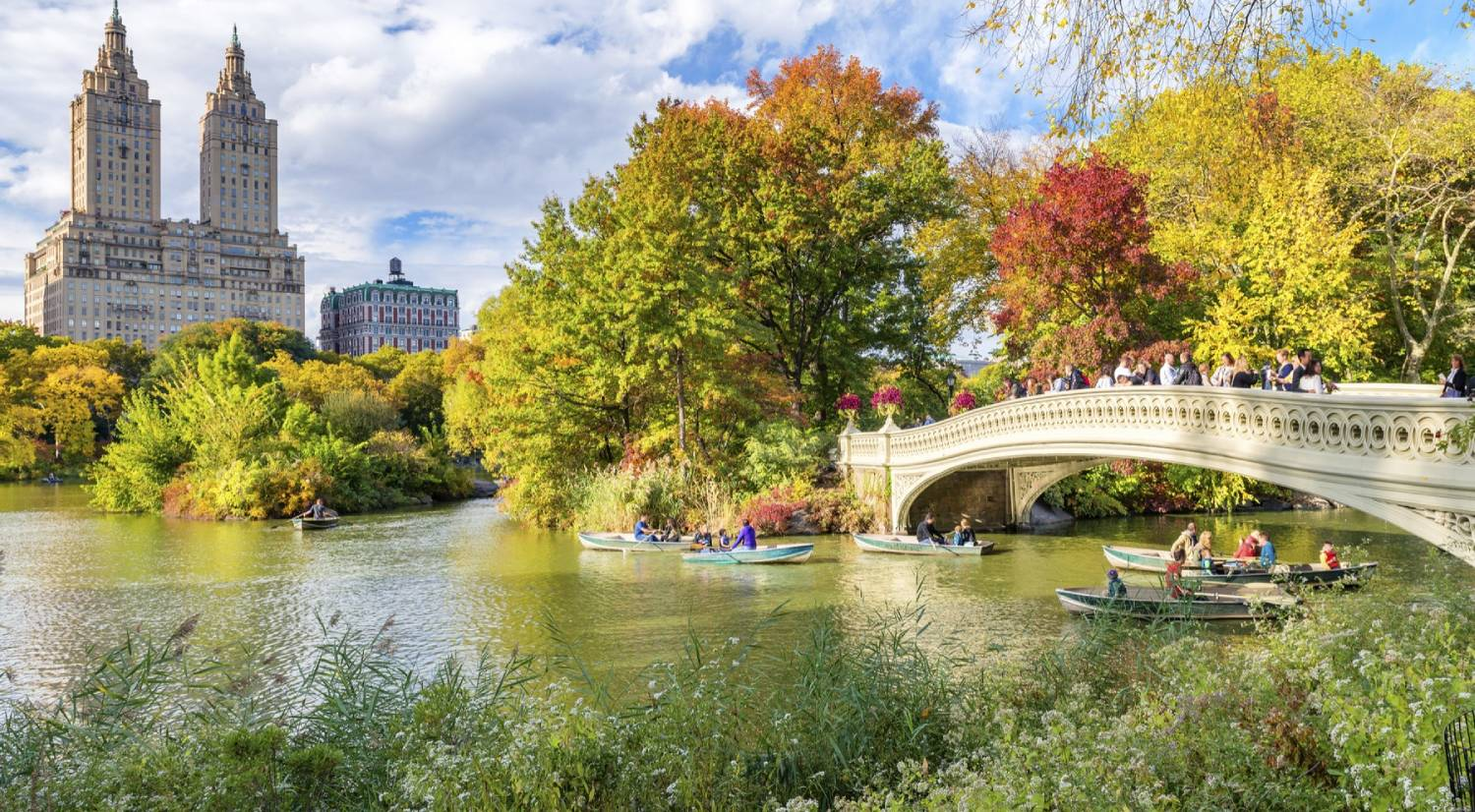 Central Park - Things To Do In New York City
