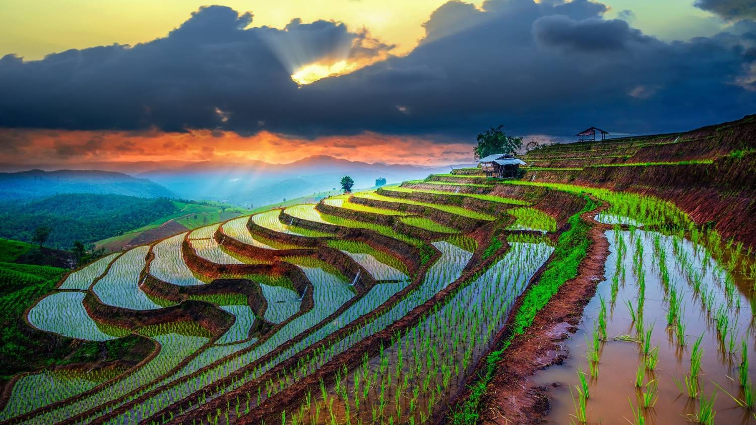 Chiang Mai - The Best Places To Visit In Thailand