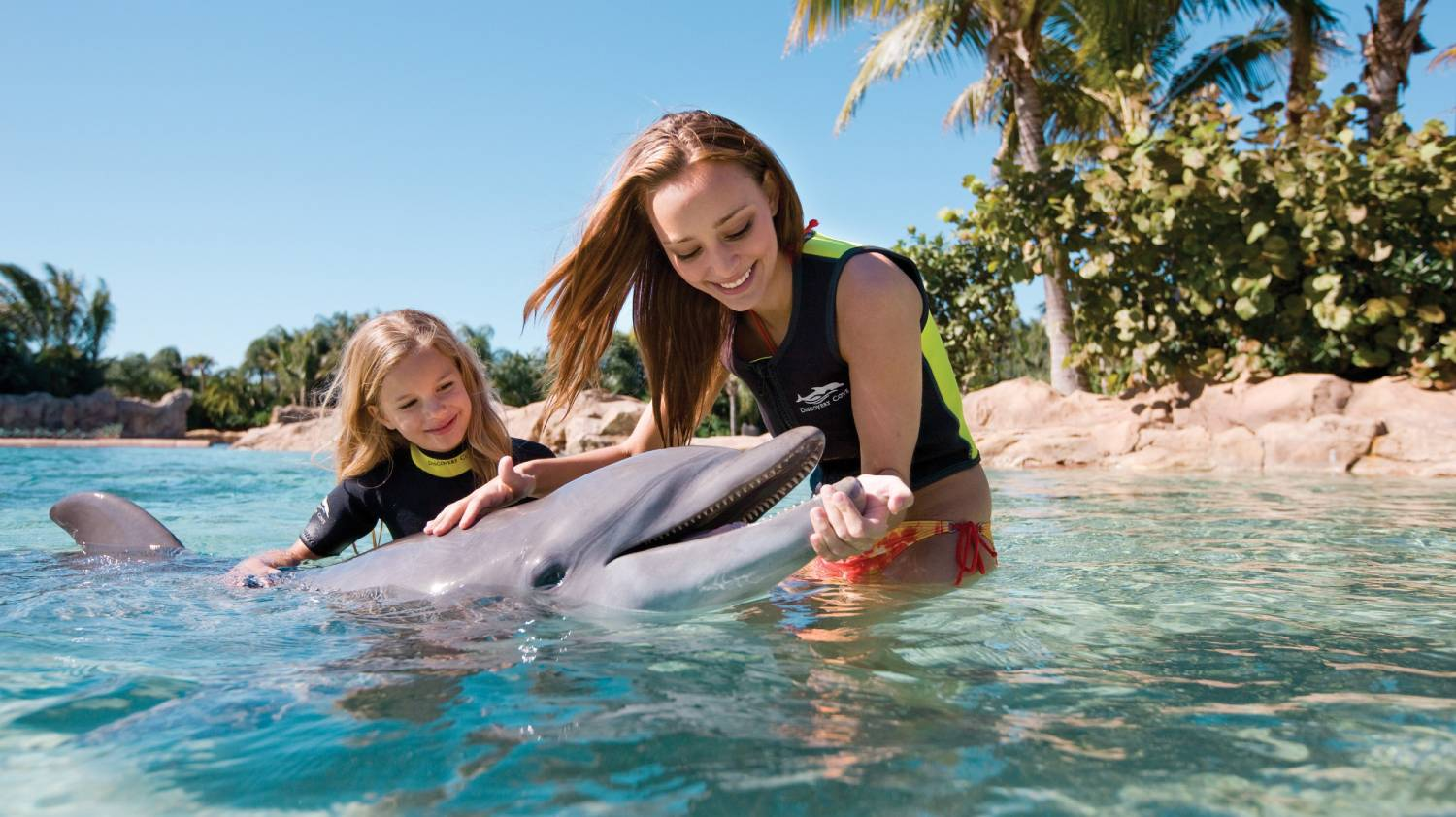 Discovery Cove - Things To Do In Orlando
