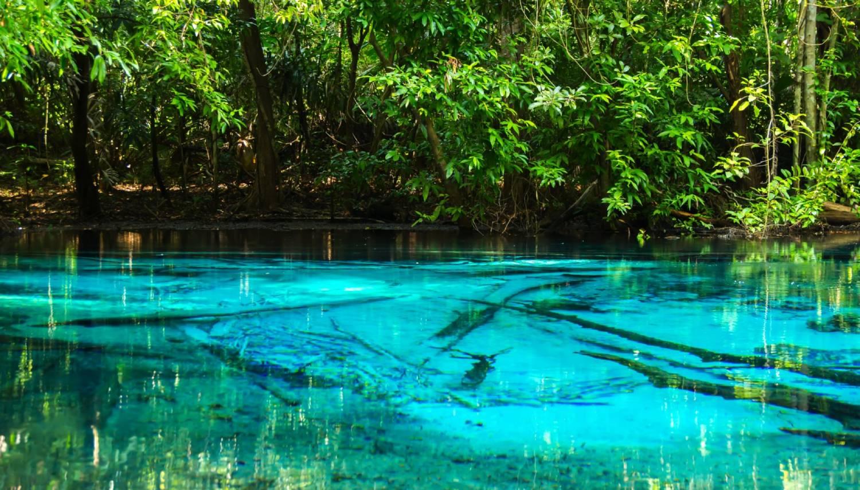 Emerald Pool (Sa Morakot) - Things To Do In Krabi