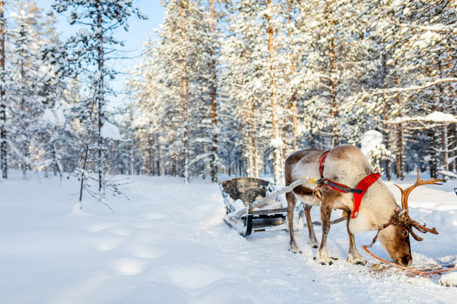 Finland - The Best Countries To Visit In Europe