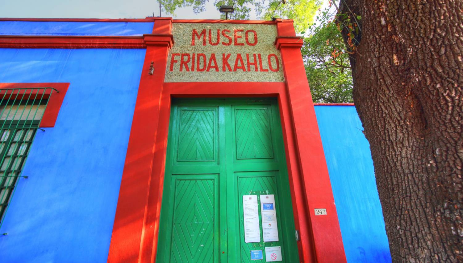 Frida Kahlo Museum (Museo Frida Kahlo) - Things To Do In Mexico City
