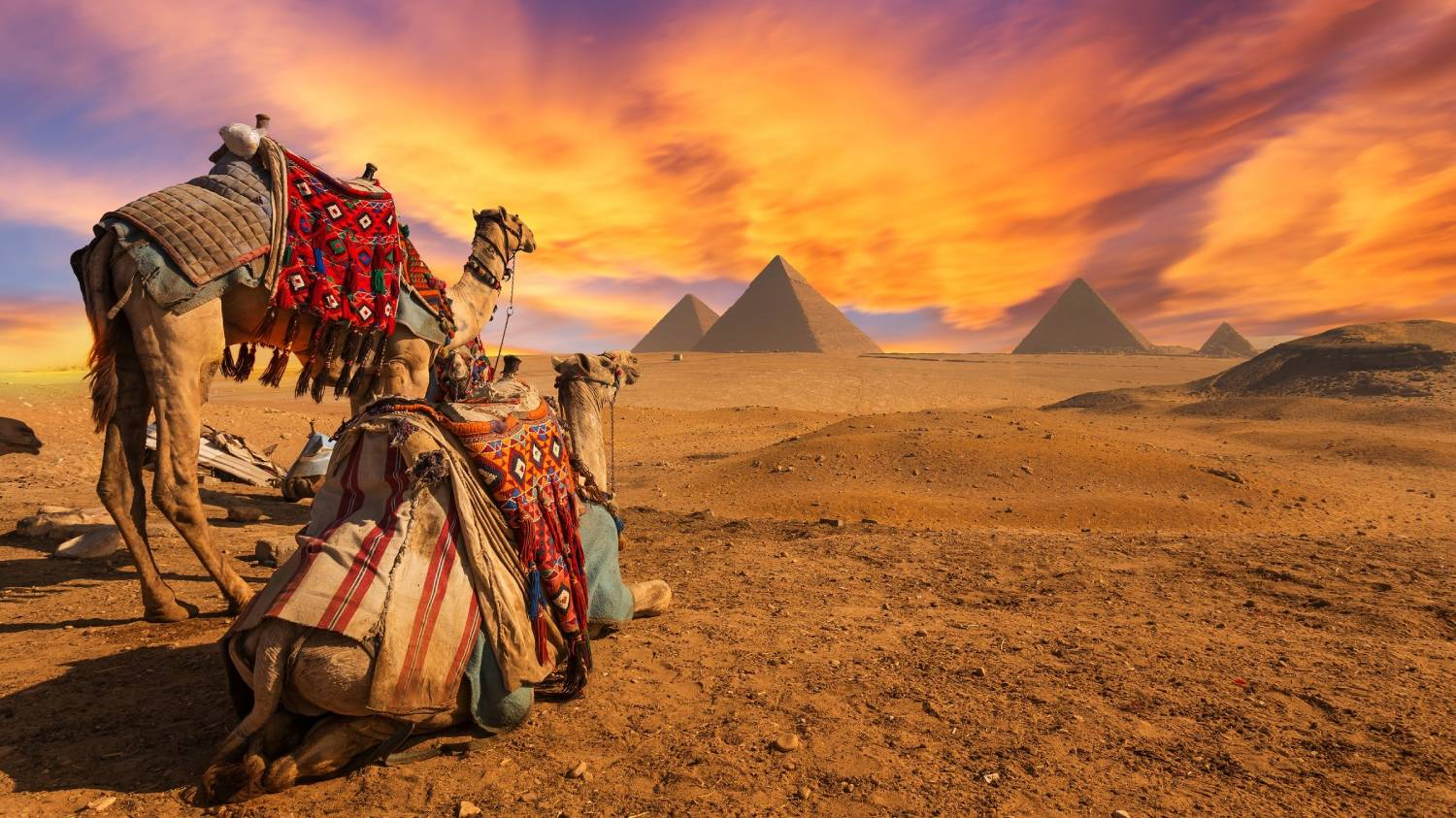 Giza - The Best Places To Visit In Egypt