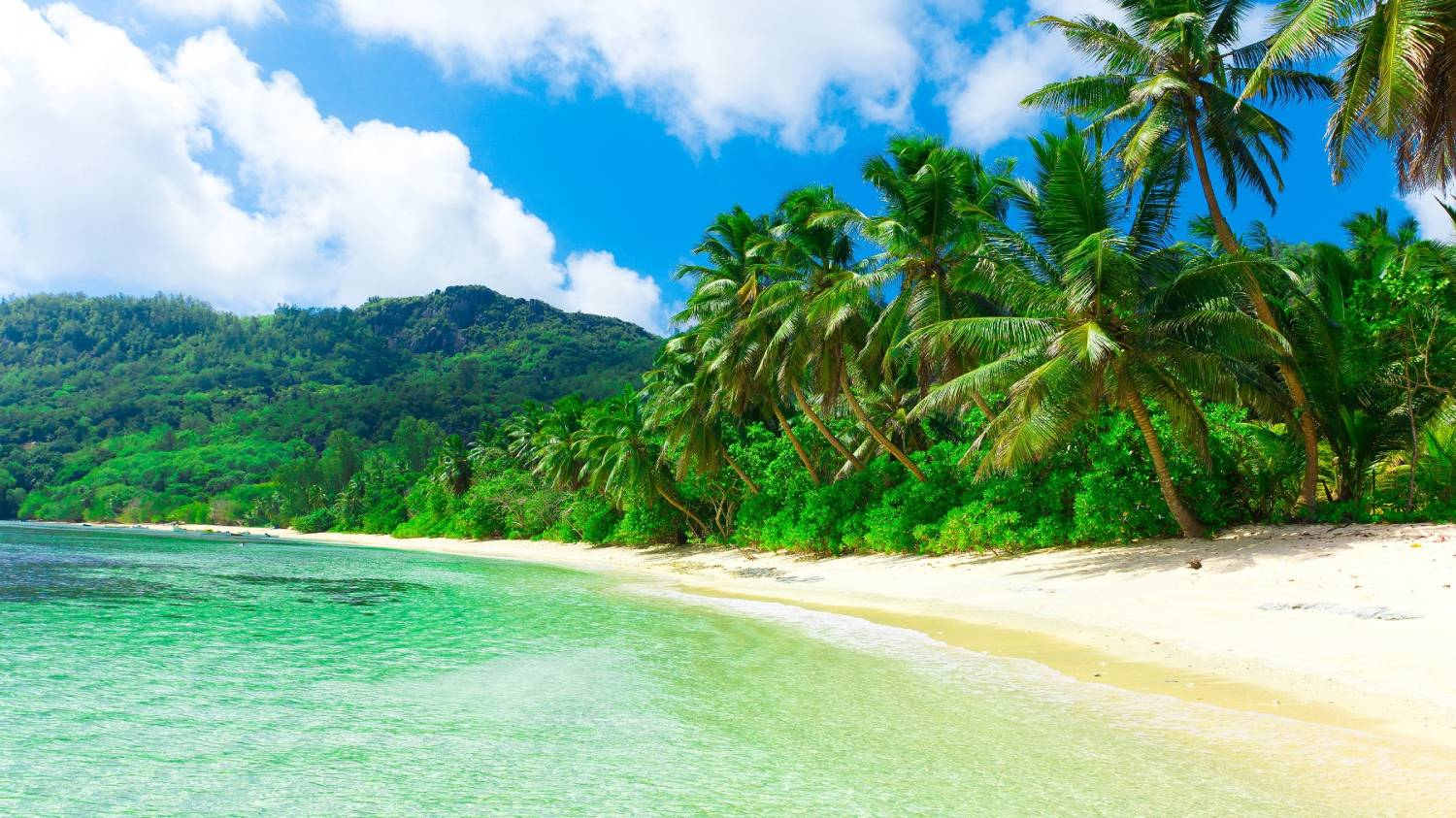 Hawaii - The Best Places To Visit In The United States Of America
