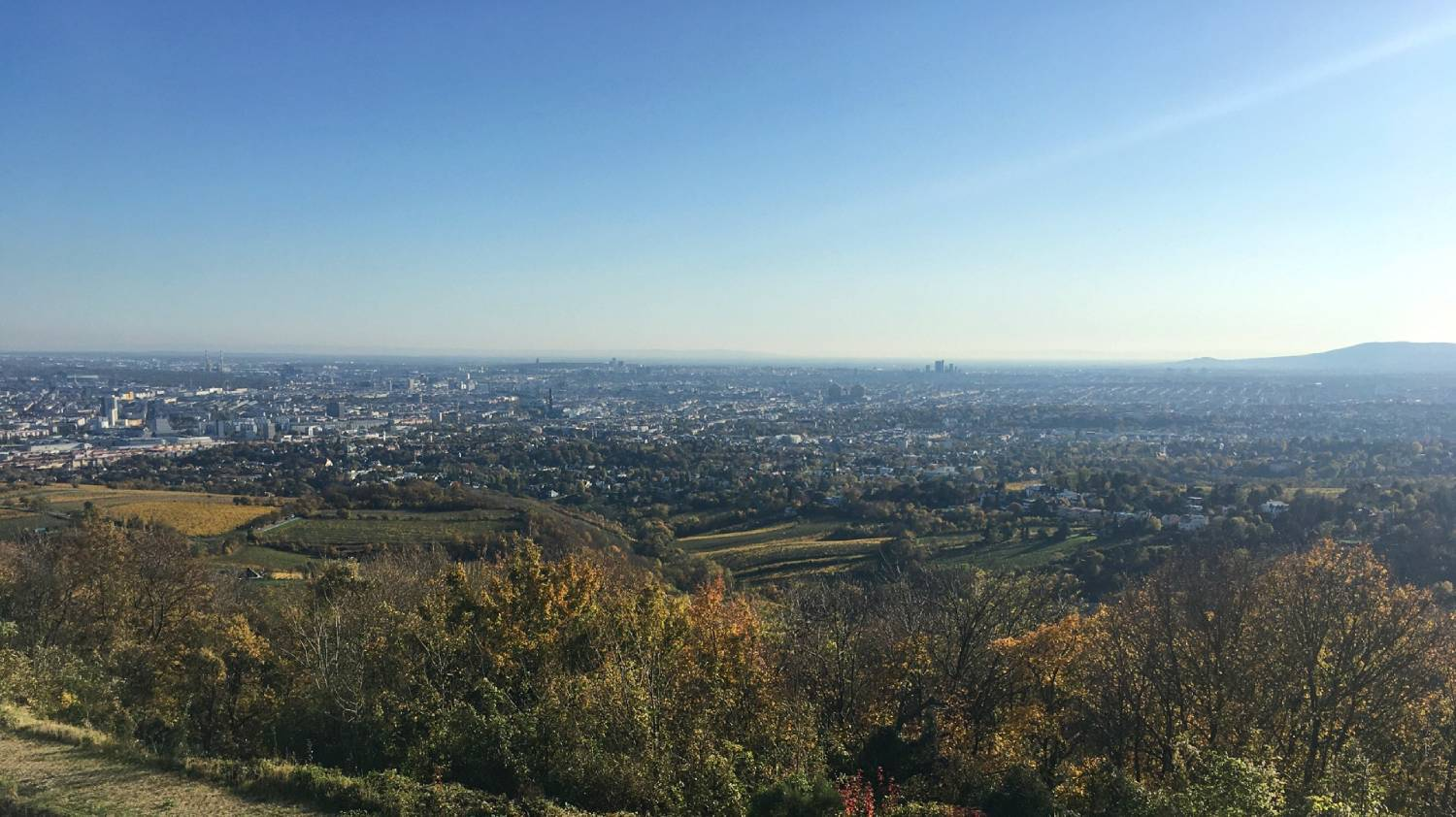 Kahlenberg - Things To Do In Vienna