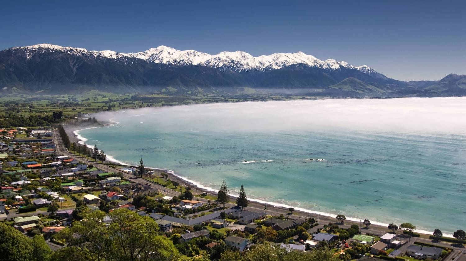 Kaikoura - The Best Places To Visit In New Zealand