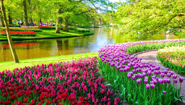 Keukenhof Gardens - Things To Do In Amsterdam