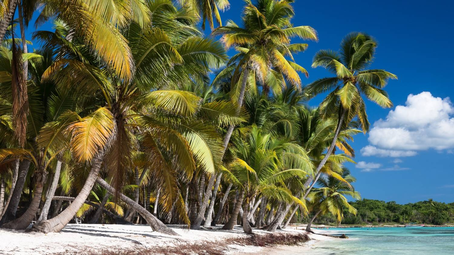 La Romana - The Best Places To Visit In The Dominican Republic
