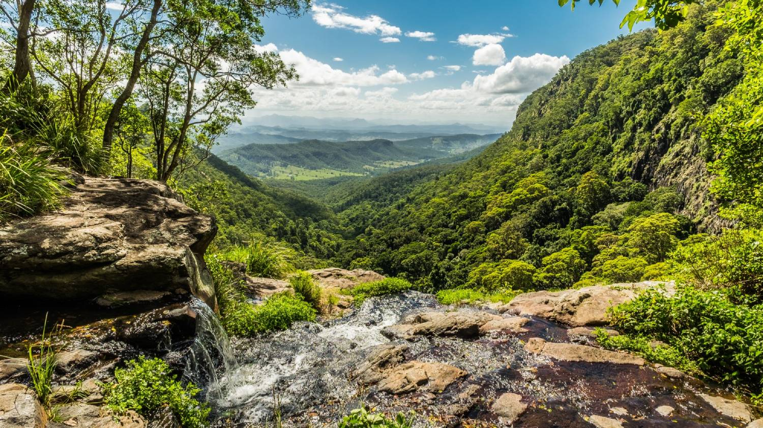 Lamington National Park - Things To Do On The Gold Coast