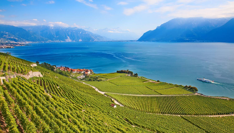 Lavaux Vineyard Terraces - Things To Do In Geneva
