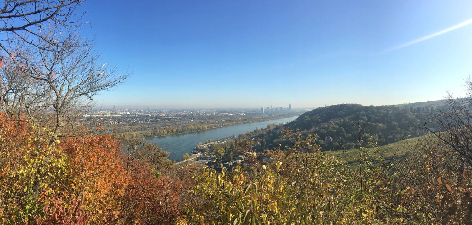 Leopoldsberg - Things To Do In Vienna