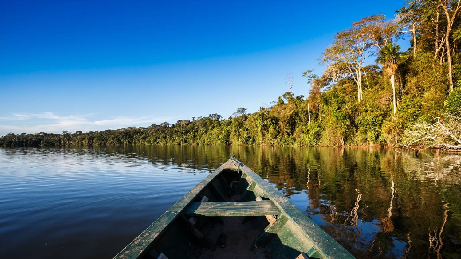Manaus - The Best Places To Visit In Brazil