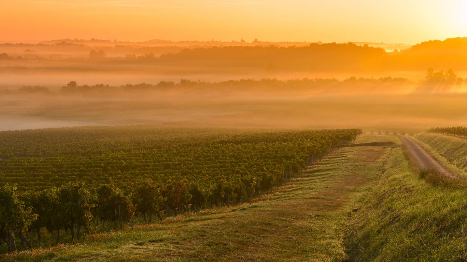 Médoc - The Best Places To Visit In France