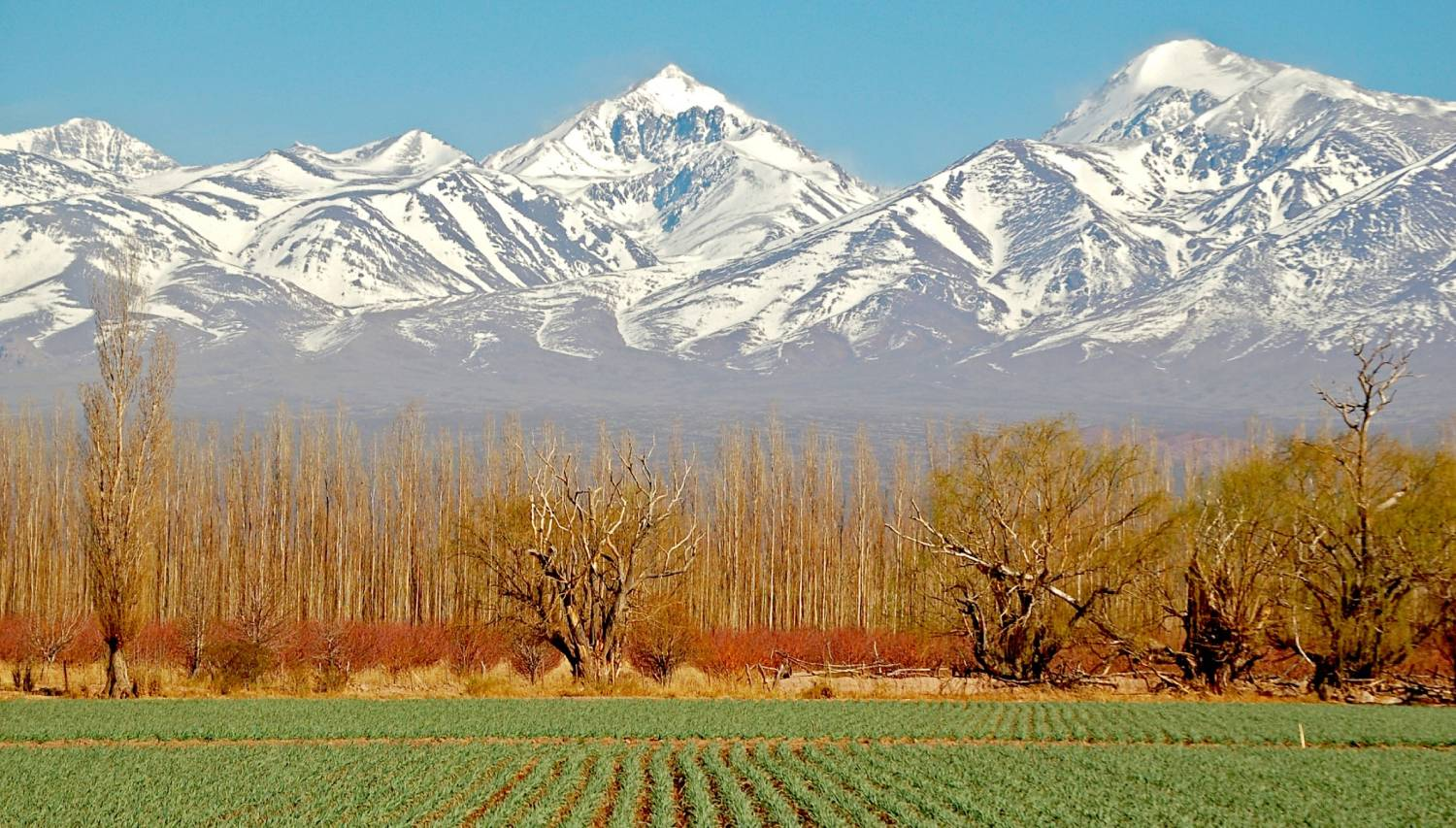 Mendoza - The Best Places To Visit In Argentina