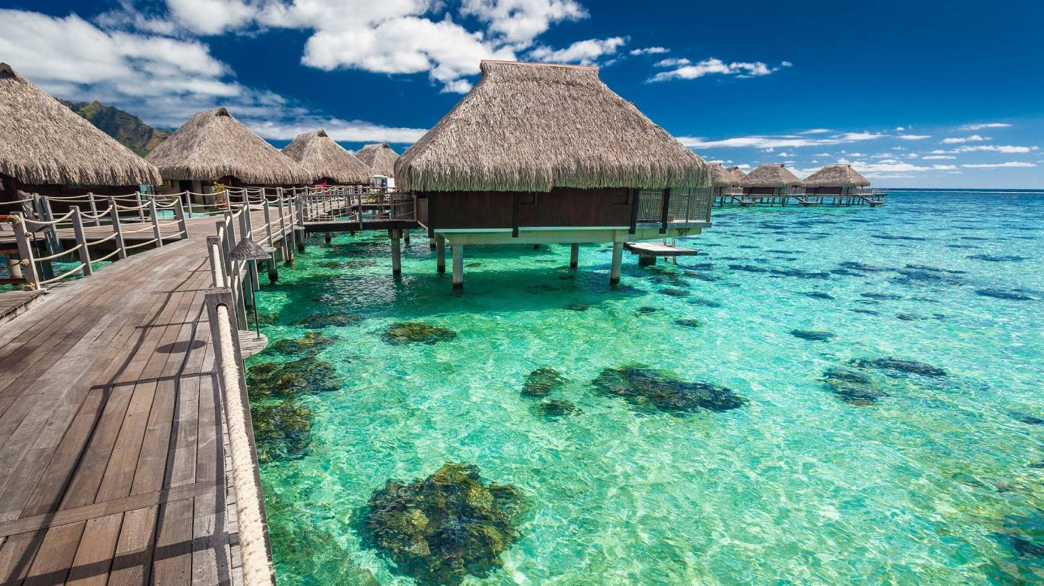 Moorea - The Best Places To Visit In French Polynesia