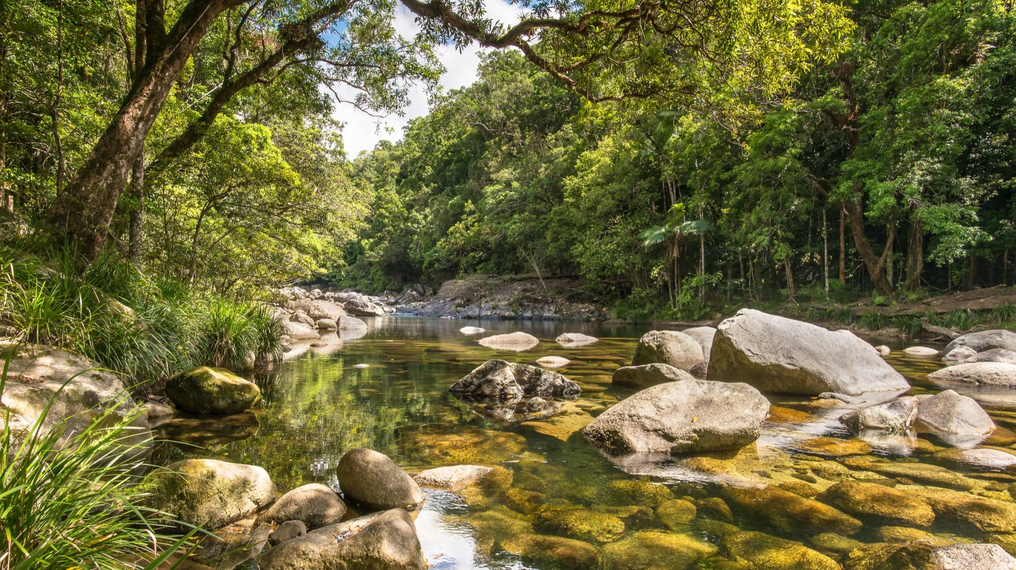 Mossman Gorge - Things To Do In Cairns