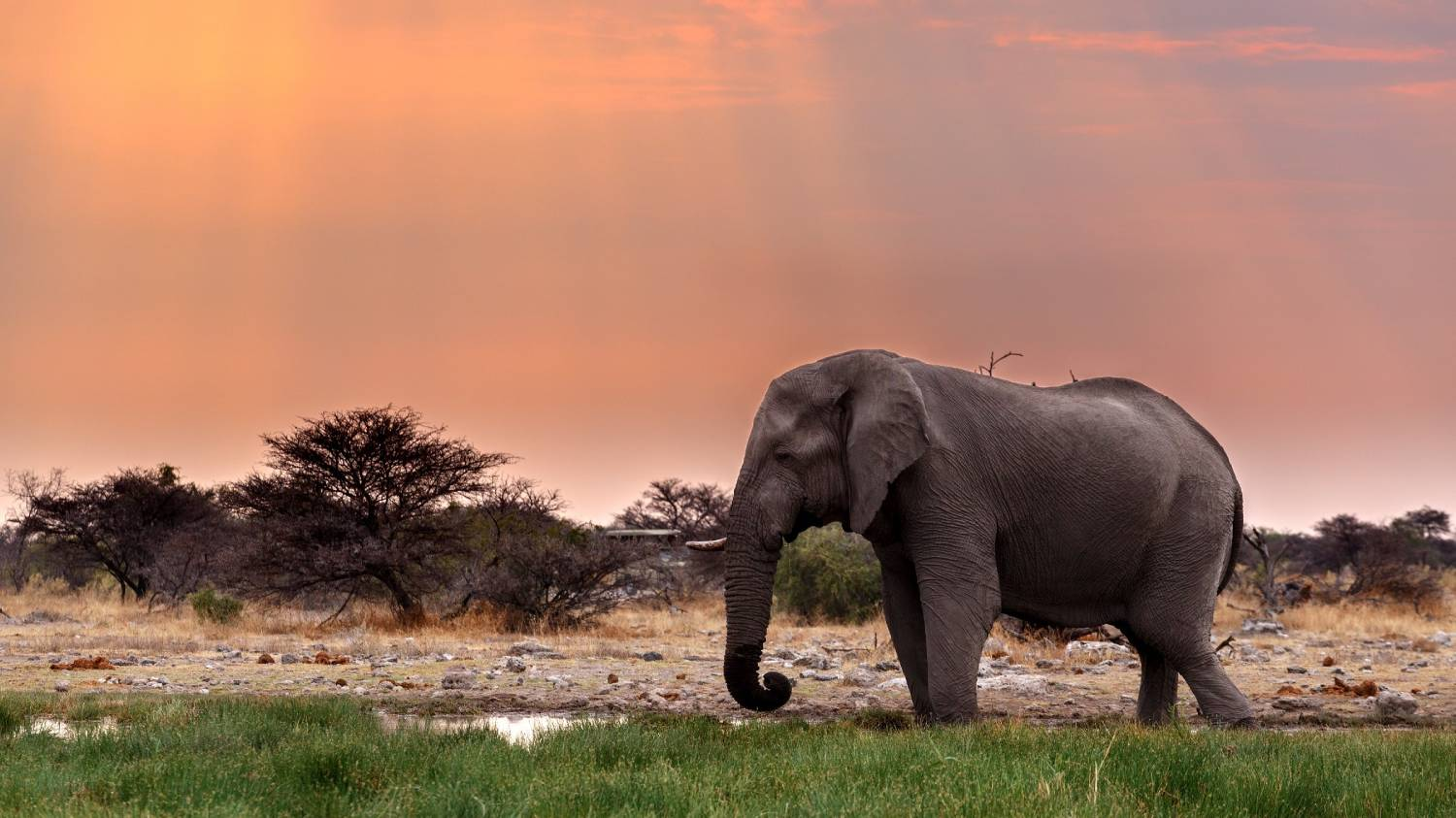 Namibia - The Best Countries To Visit In Africa