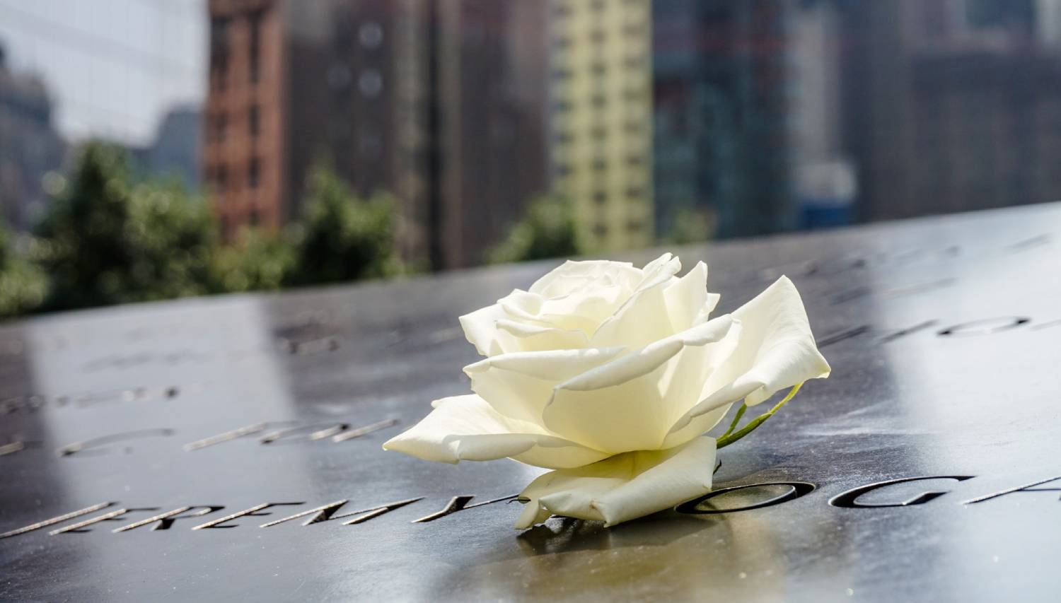 National September 11 Memorial & Museum - Things To Do In New York City