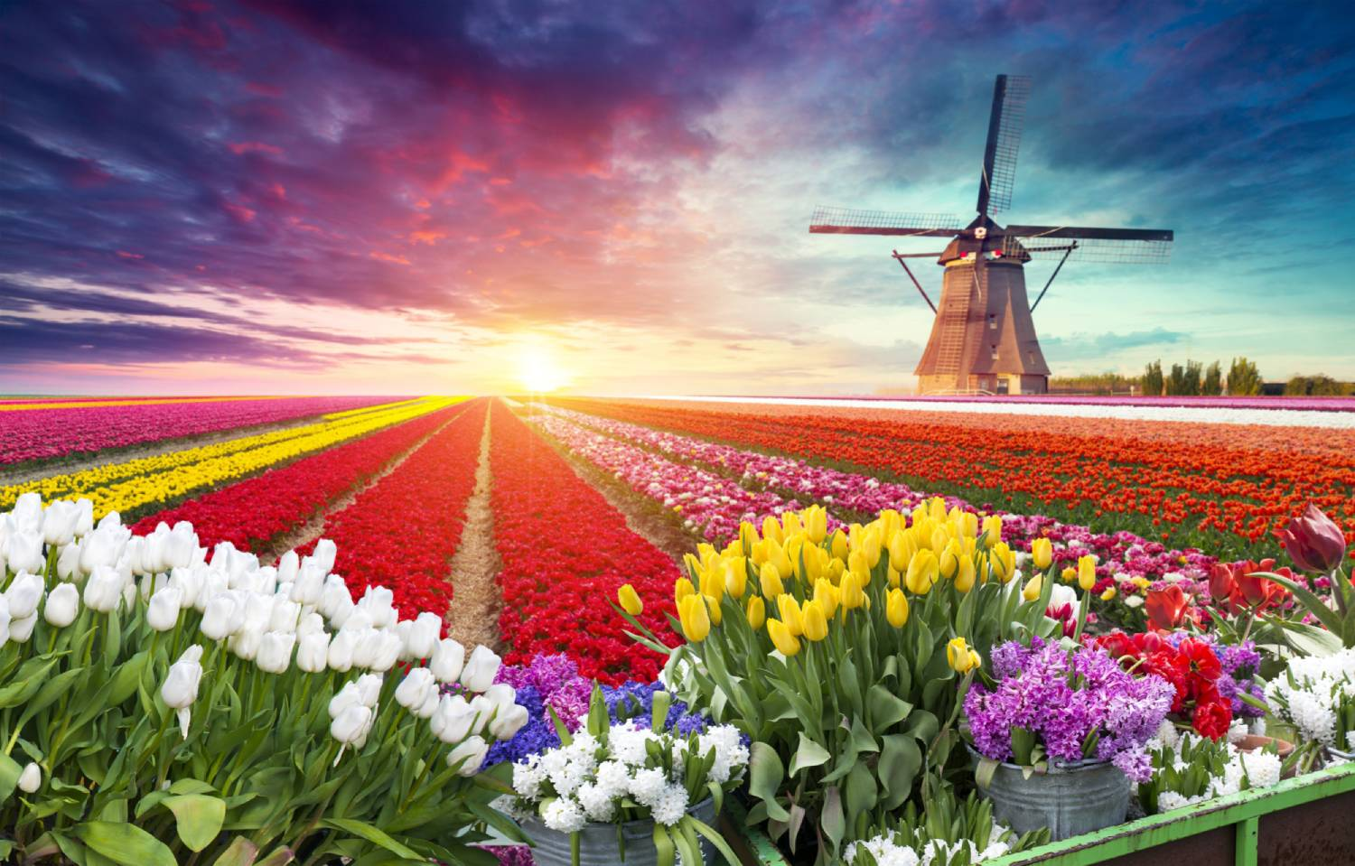 Netherlands - The Best Countries To Visit In Europe