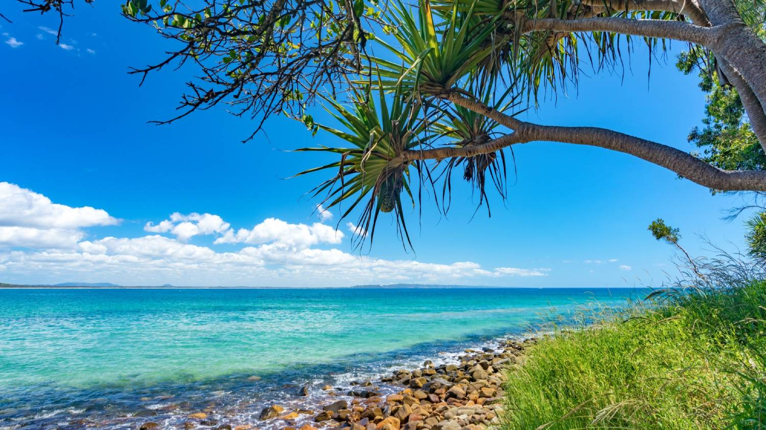 Noosa National Park - Things To Do On The Sunshine Coast