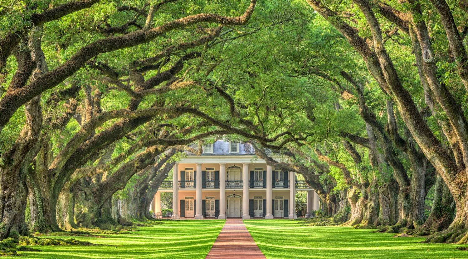 Oak Alley Plantation - Things To Do In New Orleans
