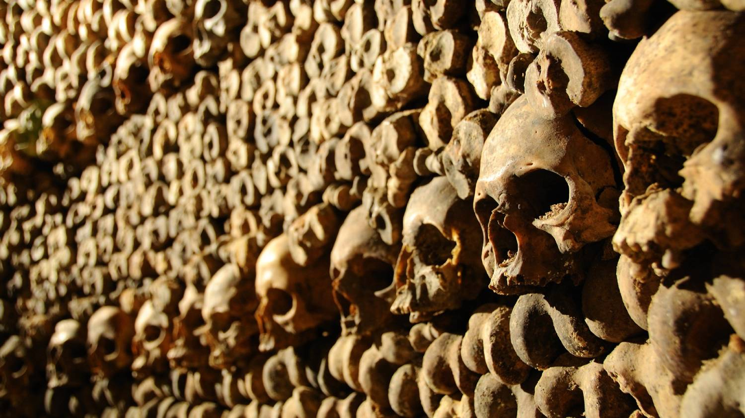 Paris Catacombs (Les Catacombes) - Things To Do In Paris