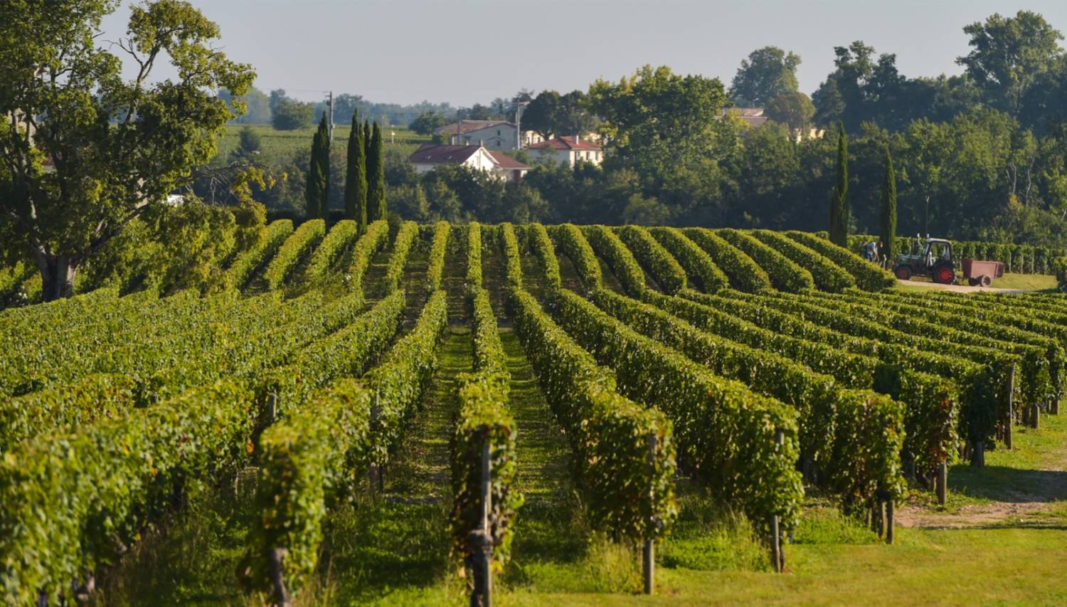 Pomerol - The Best Places To Visit In France