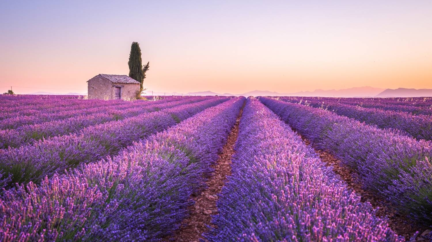 Provence - The Best Places To Visit In France