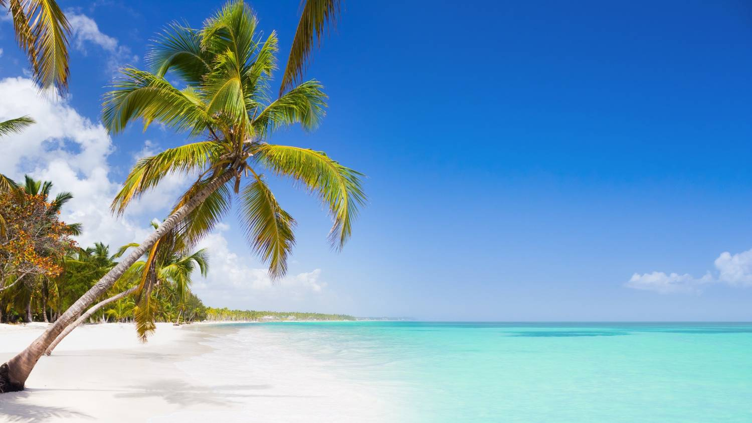 Punta Cana - The Best Places To Visit In The Dominican Republic