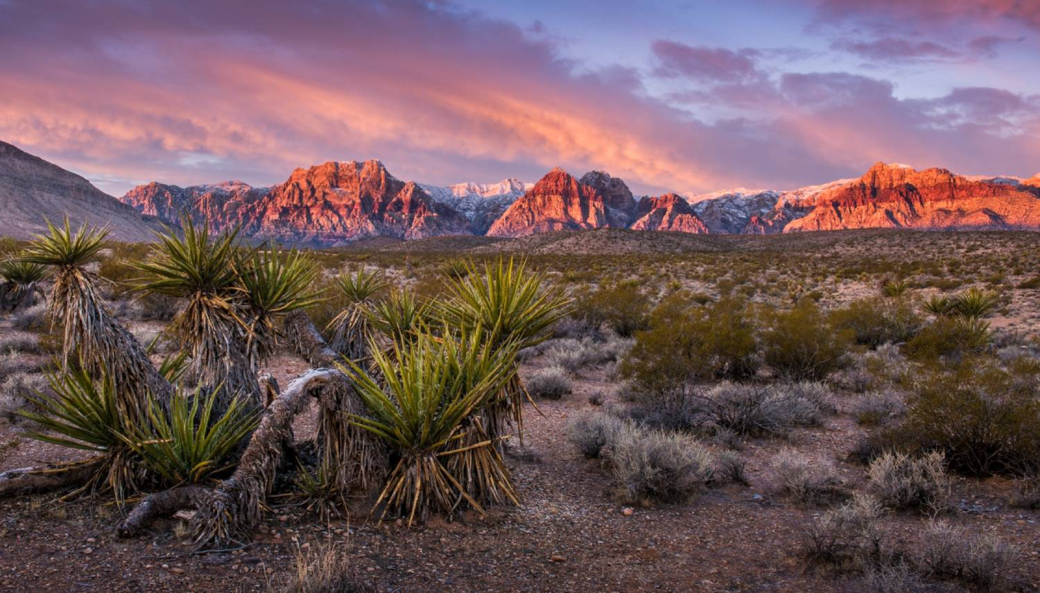 Red Rock Canyon - Things To Do In Las Vegas
