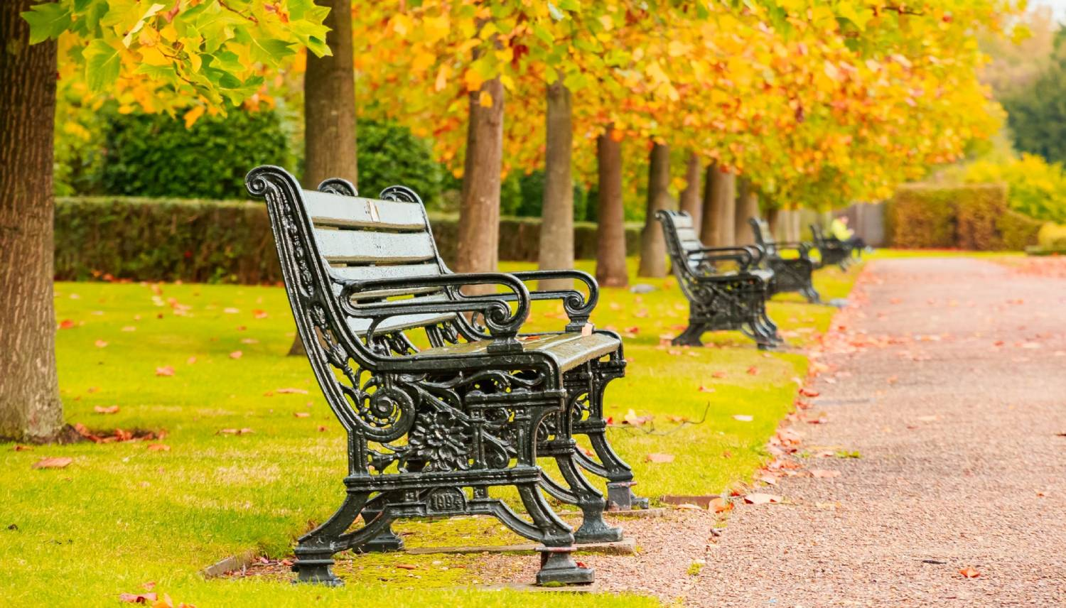 Regent's Park - Things To Do In London