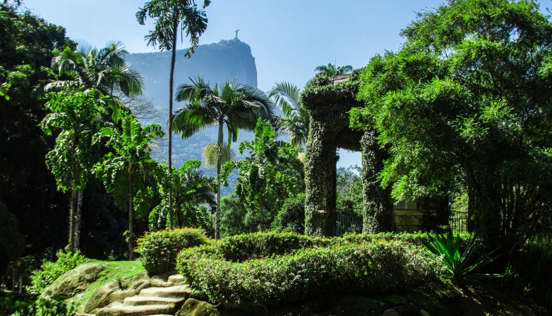 Rio de Janeiro Botanical Garden - Things To Do In Rio de Janeiro