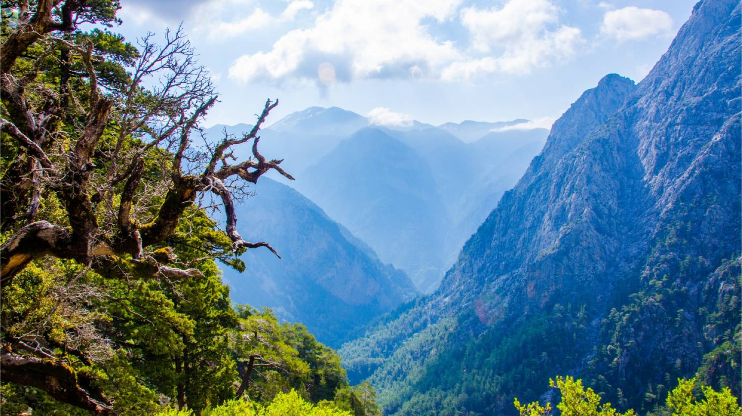 Samaria Gorge - Things To Do In Crete