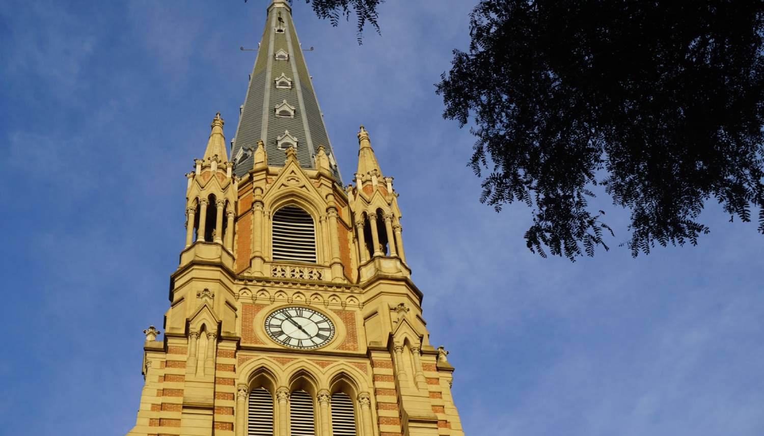 San Isidro Cathedral - Things To Do In Buenos Aires