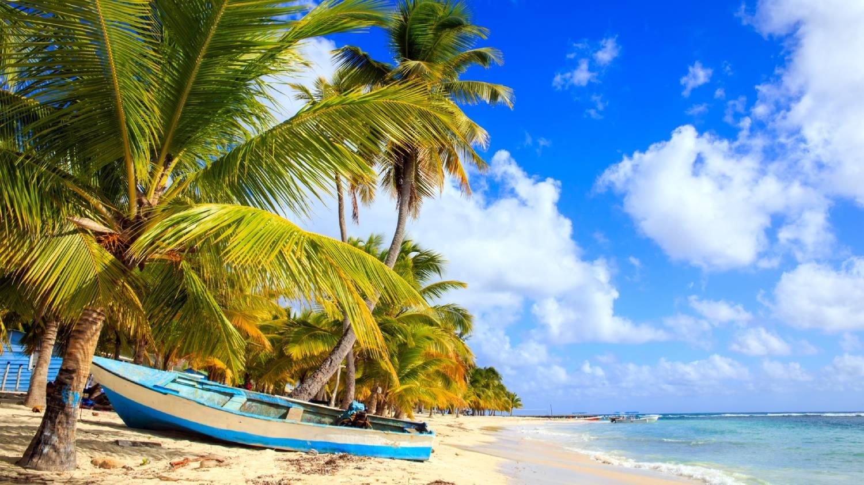 Saona Island (Isla Saona) - Things To Do In Punta Cana